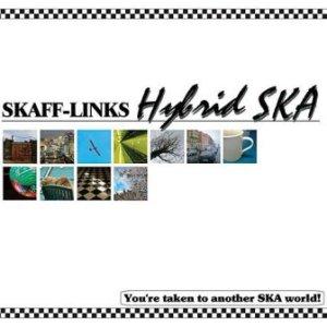 Skaff-Links - 2010 - Hybrid SKA