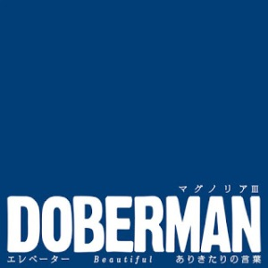 Doberman - 2017 - Magnolia 3