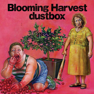 Dustbox - 2008.11.05 - Blooming Harvest