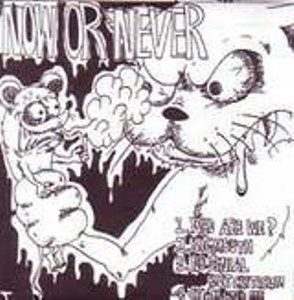 Now Or Never - 200$ - 2nd demo